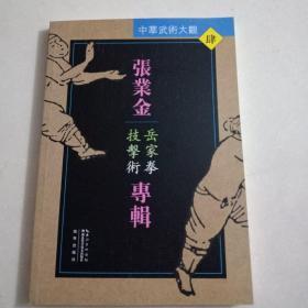 张业金专辑:岳家拳技击术