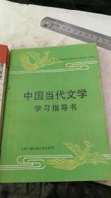 中国当代文学学习指导书