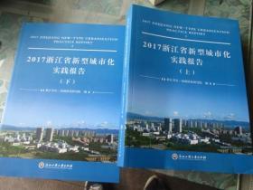 2017浙江省新型城市化实践报告(上下册)