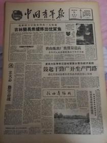 1959年5月21日中国青年报