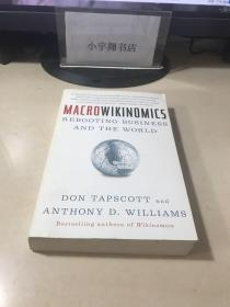 MacroWikinomics 宏观维基经济学