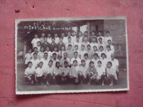 1977年宁波十六中学旧照片《同学少年 风华正茂》(初二2班师生留影)【摄影地点:十六中学校园内】