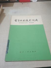 电子工业技术词典 电子陶瓷与压电、铁电晶体(一版一印)