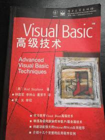 Visual Basic高级技术