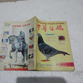 中华信鸽1998.1、2、3、5