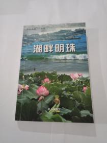 湖畔明珠(苏北名镇--大屯)