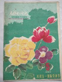 月刊:《无线电与电视》1960年5月号总第23 期