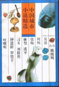 中国城市小说精选