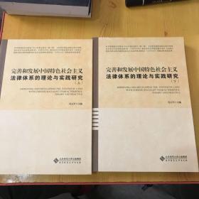 完善和发展中国特色社会主义法律体系的理论与实践研究(上下册)