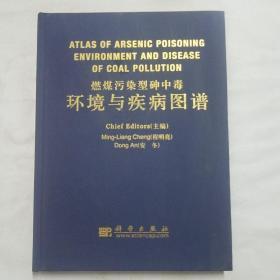 环境与疾病图谱:燃煤污染型砷中毒