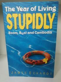 The year of living stupidly:Boom, bust and Cambodia by James Eckardt (亚洲研究)英文原版书