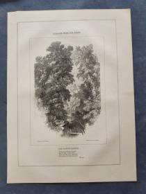 1850年 木口木刻 木版画 (正背印刷)之022号 0605