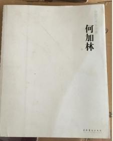 中国艺术家年鉴:何加林
