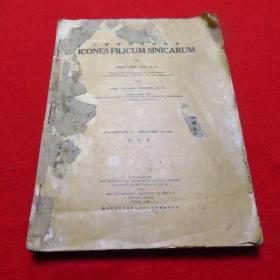 中国蕨类植物图谱 第一卷