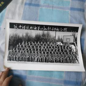 铁十师后勤部第四批转业干部合影1982