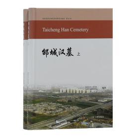 陕西省考古研究院田野考古报告第85号:邰城汉墓(全二册)