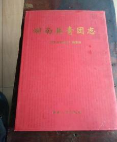 湖南共青团志