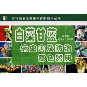 白菜甘蓝病虫害及防治原色图册