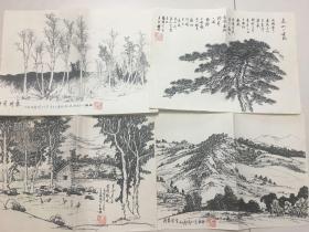 画家冯振旺早期画作13幅(6幅写生为复印件加盖印章,其他原作)