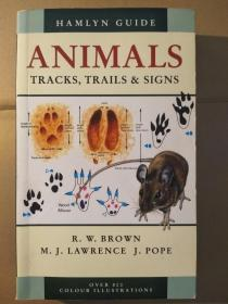 Hamlyn Guide Animals: Tracks, Trails and Signs