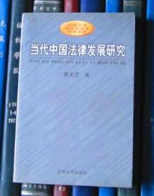 当代中国法律发展研究——模式、传统与过程