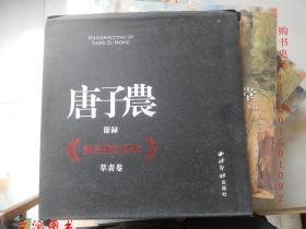 唐子农节录《戏为双松图歌》草书卷( 签名本 )