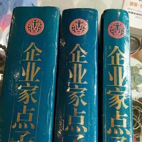 企业家金点子库(上中下)3册