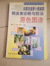 白菜甘兰萝卜类蔬菜病虫害诊断与防治原色图