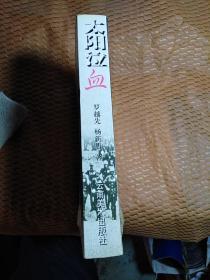 太阳泣血【血战台儿庄—云南六十军抗日史】