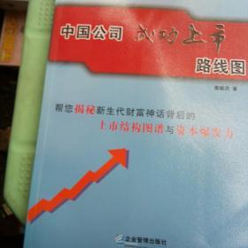 中国公司成功上市路线图