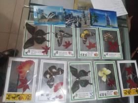香山红叶、蝴蝶 标本工艺品卡片,立体画卡片(12张)
