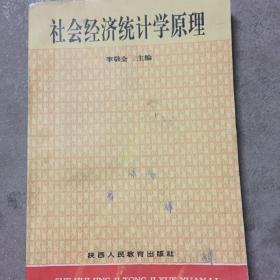 社会经济统计学原理