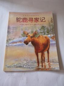 动物成长故事绘本,驼鹿寻家记