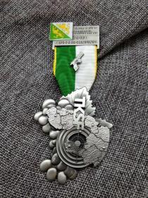 徽章 奖章 纪念章 瑞士 TKSF 射击比赛 2013
