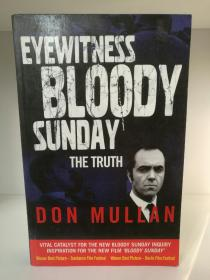 "北爱尔兰""血色星期天"" 事件纪实 Eyewitness Bloody Sunday: The Truth by Don Mullan (英国研究)英文原版书"