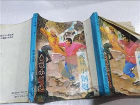 武林小钢炮(上,下)两本  卧龙生 中国旅游出版社 1993年4月 32开平装