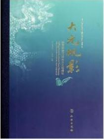 大元帆影:韩国新安沉船出水文物精华