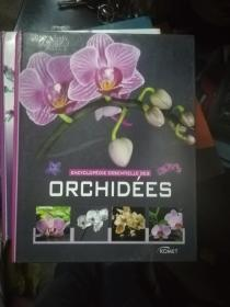 encyclopédie essentielle des orchidées (French) Hardcover