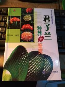 君子兰种植与鉴赏