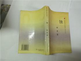 中国现代长篇小说丛书:蚀