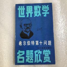 世界数学名题欣赏:希尔伯特第十问题(一版一印)