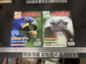 野生动物画报 小哥白尼 (2011年第3.4期合售)