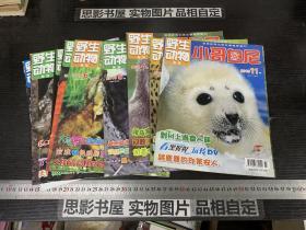 野生动物画报 小哥白尼 (2010年第3.4.5.6.7.8.9.10.11.12期合售)