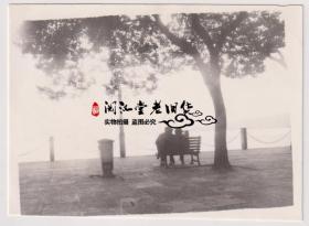【任6件包邮挂】老照片收藏 艺术照 8*6cm