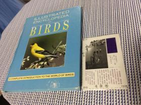 英文原版  illustrated encyclopedia of birds: a complete introduction to the world of birds  图解的鸟类百科全书:鸟类世界的完整介绍