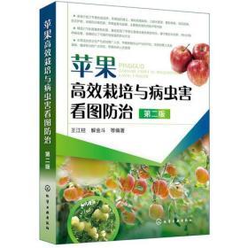 苹果高效栽培与病虫害看图防治(第二版)