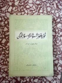 简明维吾尔语方言词典(维吾尔文)