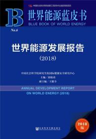 世界能源发展报告(2018)