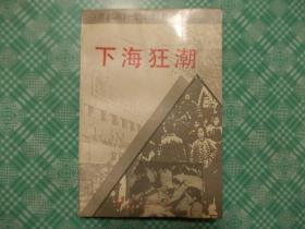 下海狂潮;共和国风雨实录丛书