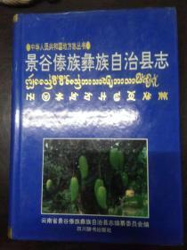 景谷傣族彝族自治县志